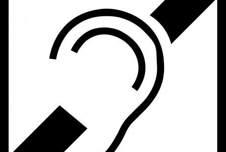 Discap Audit logo